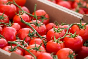 Farmers market tomatoes - Cumming GA Forsyth County